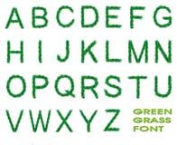 Fonte tipografica dell'erba verde Immagine Stock Libera da Diritti