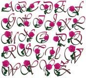 Fonte tipografica floreale Immagine Stock