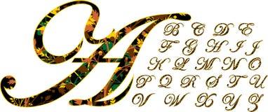 Fonte tipografica Multi-colored Immagine Stock