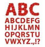 Fonte tipografica rossa delle rose Fotografia Stock