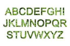 Fonte tipografica verde di eco Immagine Stock Libera da Diritti