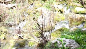 Fontegrecawaterval stock footage