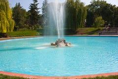 Fontein, de grote motie van de waterstraal op een meer Stock Afbeeldingen