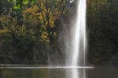 Fontein in een park met boomachtergrond royalty-vrije stock foto's
