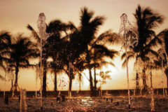 Fontein-en-zonsondergang Royalty-vrije Stock Afbeeldingen