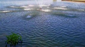 fontein in het midden van het meer stock footage