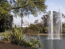 Fontein in Ibirapuera-park stock afbeelding