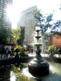 Fontein in Madison Square Park Stock Fotografie