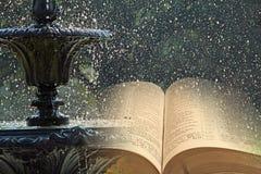 Fontein van wateren van het leven stock fotografie