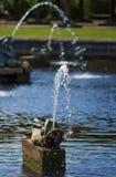 Fontein - vissen Royalty-vrije Stock Afbeeldingen