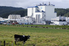Fonterra Co-operative Group Limited Royalty Free Stock Photography