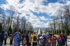 Fontes de Peterhof e opini?o e turistas do pal?cio em St Petersburg imagens de stock