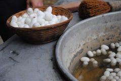 Fontes de seda da produção Fotos de Stock