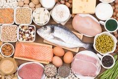 Fontes do alimento da proteína foto de stock