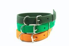 Fontes do animal de estimação sobre os colares de cor-de-rosa e de vermelho para o cão imagens de stock royalty free