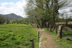 Fontes dos les de Sant Joana, Olot Fotografia de Stock