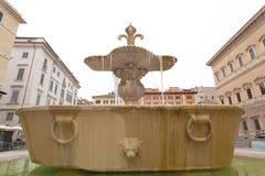 Fontes gêmeas com cicicle na praça Farnese, Roma Fotos de Stock