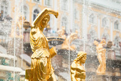 Fontes grandes da cascata no palácio de Peterhof fotos de stock
