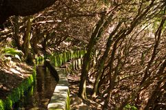 25 Fontes levada auf Madeira-Insel, Portugal Stockfotografie