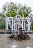 Fontes no parque de Petergof, St Petersburg Fotos de Stock