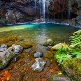 Fontes Wasserfall Levada DAS 25, Madeira Stockfotos