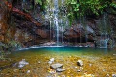 Fontes Wasserfall Levada DAS 25, Madeira Stockbilder