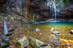 Fontes Wasserfall Levada DAS 25, Madeira Stockfotografie