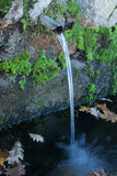 Fonti d'acqua naturali Fotografia Stock Libera da Diritti