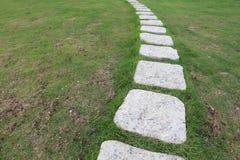 Foo ścieżka przez krzaków w ogródzie Zdjęcia Stock