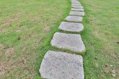 Foo ścieżka przez krzaków w ogródzie Fotografia Royalty Free