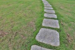Foo ścieżka przez krzaków w ogródzie Obrazy Royalty Free