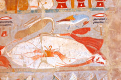 Food. Ancient Egyptian meat including cranes, ducks geese, and beef Royalty Free Stock Photos