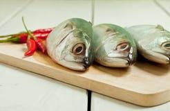 Food. Three fish of food preparation Royalty Free Stock Photo
