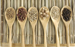 Food. Set of Allspice, peppercorns and white peppercorns, nutmeg seeds on wooden spoon Stock Photography