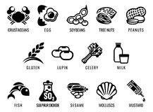 Food Allergen Icons Stock Image