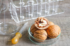 Food allergy and research in the lab Royalty Free Stock Images
