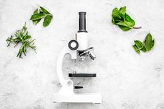 Food analysis. Pesticides free vegetables. Herbs rosemary, mint near microscope on grey background top view copy space. Food analysis. Pesticides free vegetables stock image