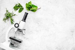 Food analysis. Pesticides free vegetables. Herbs rosemary, mint near microscope on grey background top view copy space. Food analysis. Pesticides free vegetables stock photo
