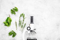 Food analysis. Pesticides free vegetables. Herbs rosemary, mint near microscope on grey background top view copy space. Food analysis. Pesticides free vegetables royalty free stock photo