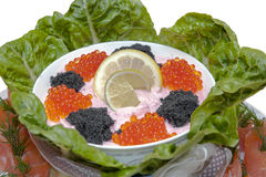Food - appetizer plate-caviar  and fish Stock Images