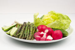 Food arrangement with fresh red radishes, cucumbers, lettuce and grilled asparagus. On a white plate Royalty Free Stock Images