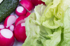 Food arrangement with fresh red radishes, cucumbers, lettuce and grilled asparagus. On a white plate Stock Images