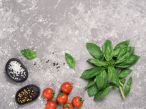 Food background with basil, tomatoes, spices stock image