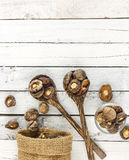 Food background - dry  shiitake mushrooms on white wood Royalty Free Stock Images