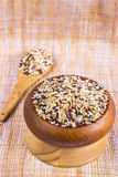 Food background with of five rice variety . rice mixture. brown Royalty Free Stock Images