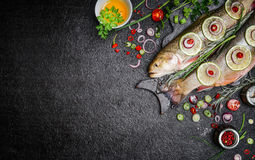 Free Food Background For Fish Dishes Cooking With Various Ingredients. Raw Char With Oil, Herbs And Spices On Cutting Board , Top View. Stock Photo - 63689570