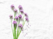 Food background with free space for text. Schnitt-onion, chives flowers on white background. Top view royalty free stock photo