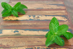 Food background: Fresh mint  on wooden table with copy space Royalty Free Stock Image