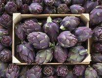 Food background. Green and purple Italian Artichokes Royalty Free Stock Photo