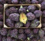 Food background. Green and purple Italian Artichokes Stock Photos
